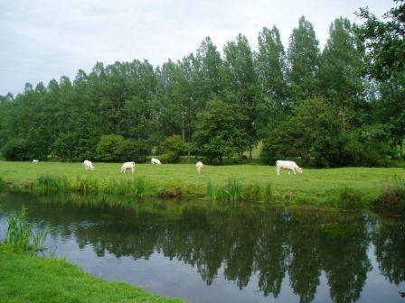 Manche, juillet 2009 : Le Vast